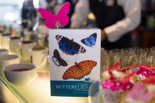 Book about Common Butterflies by the Teawares
